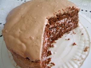coconut choco cake 1