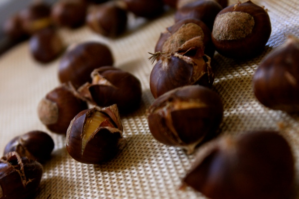 chestnuts open